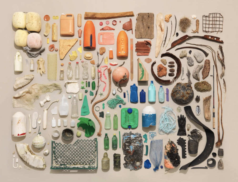 found objects organized neatly