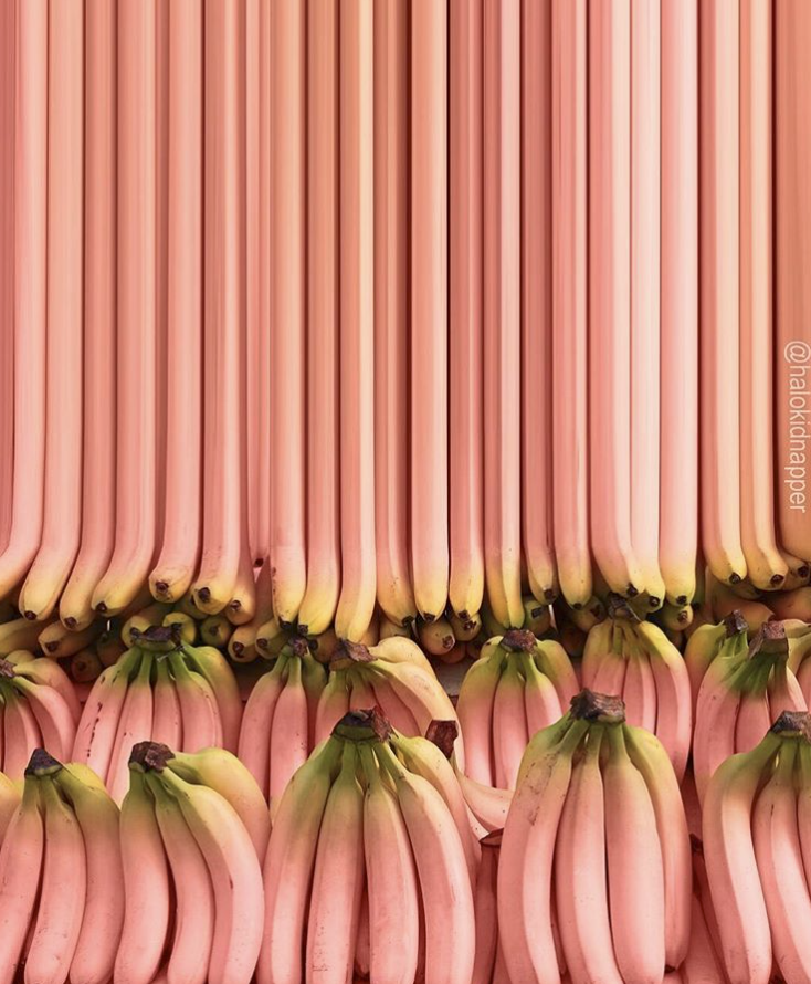 pink bananas.png