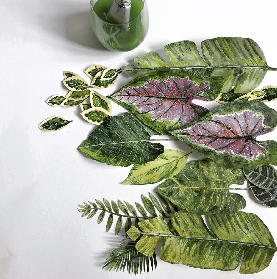 mondocherry painted leaves.png