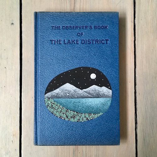cute illustrated nature book design book cover for Lake District