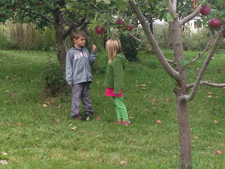 apple-picking-2.jpg