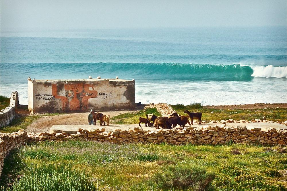 taghazout-surf-spots-boilers3.jpg