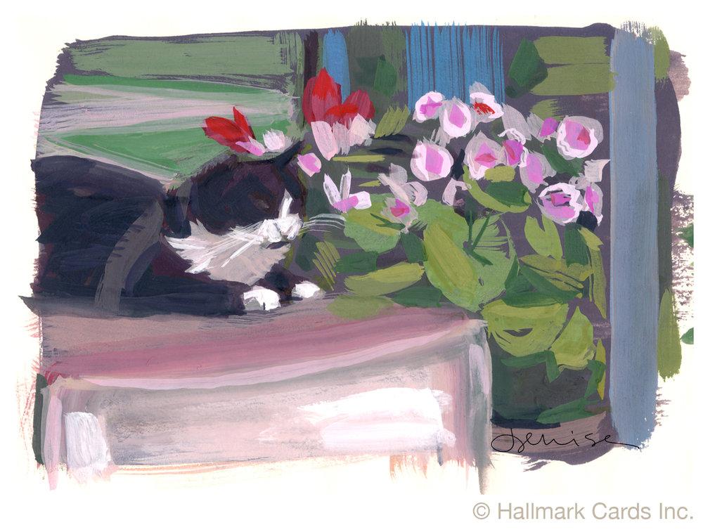 French Waterway cat.jpg