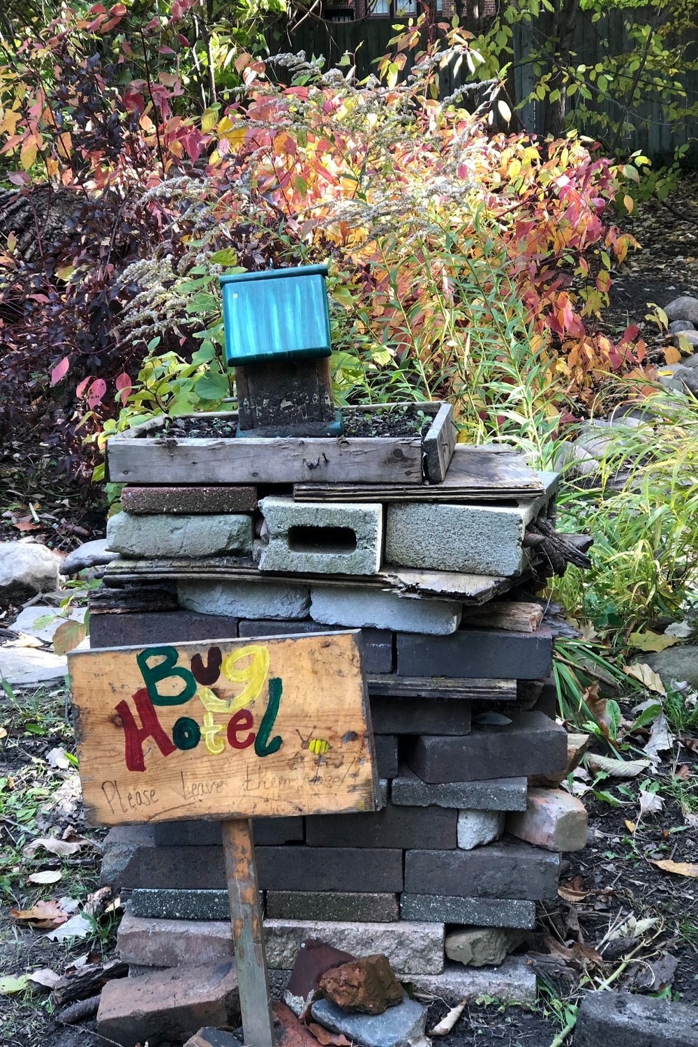 When I taught the creative writing club last fall, we found Detroit Waldorf's Bug Hotel hiking outside the school.