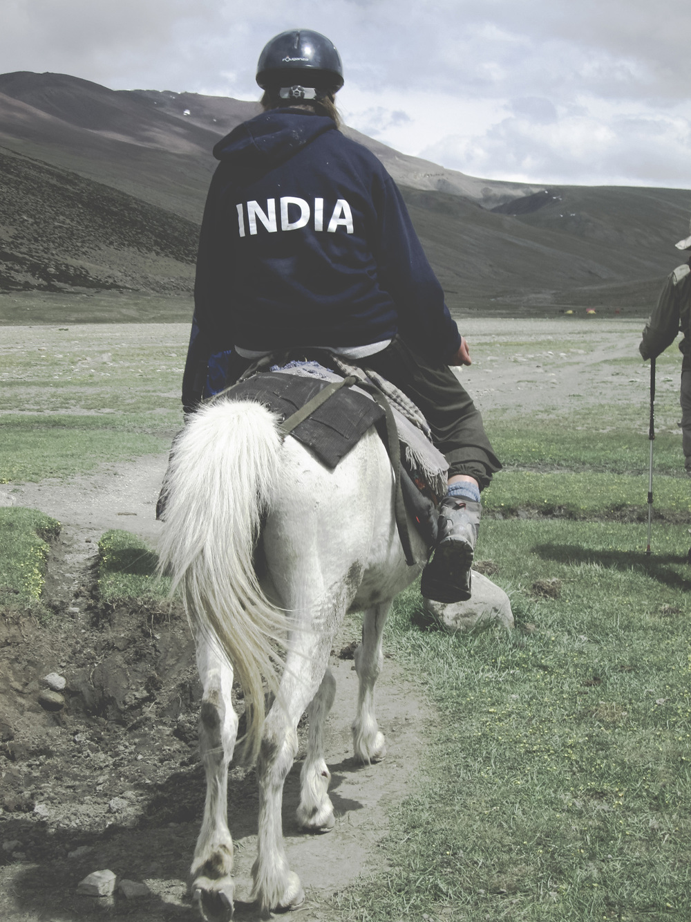 2014Feb_International_4HorseIndia.jpg