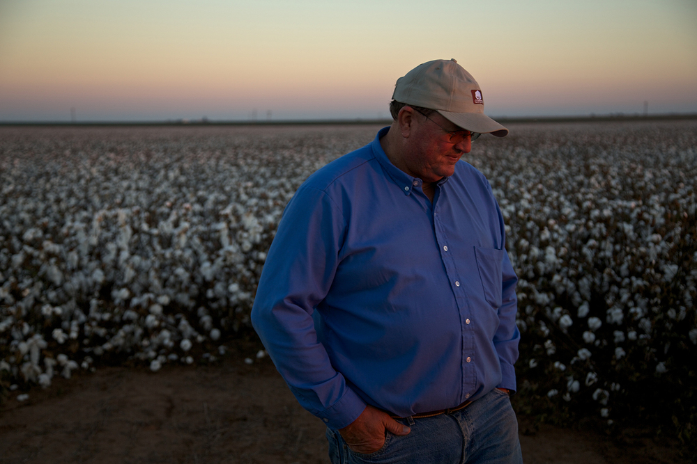 Cotton_USA_009.jpg