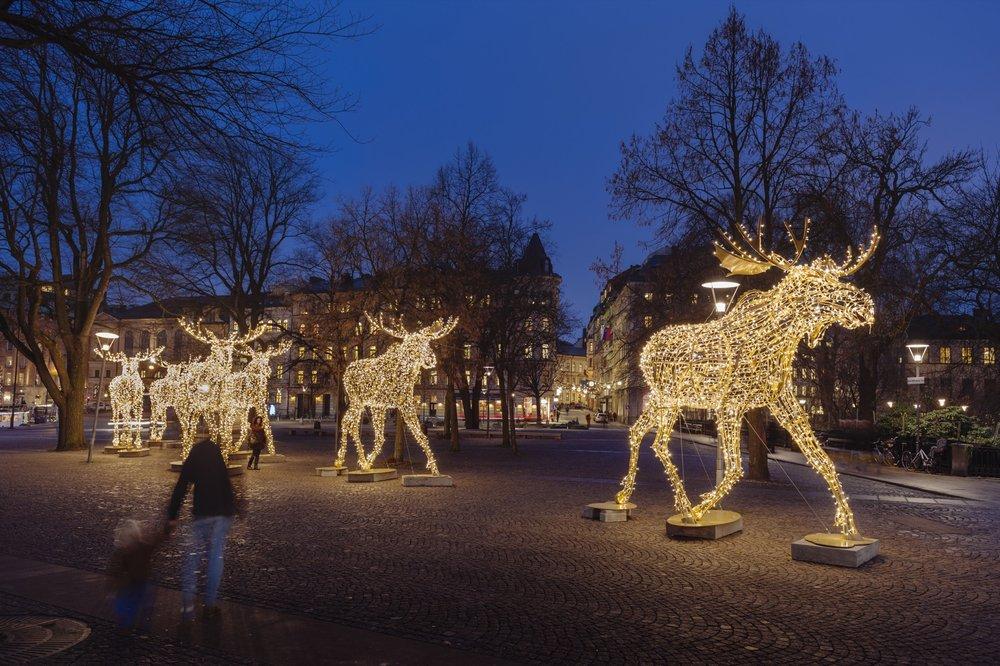 Julbelysning på Nybroplan. Foto: Mikael Sjöberg