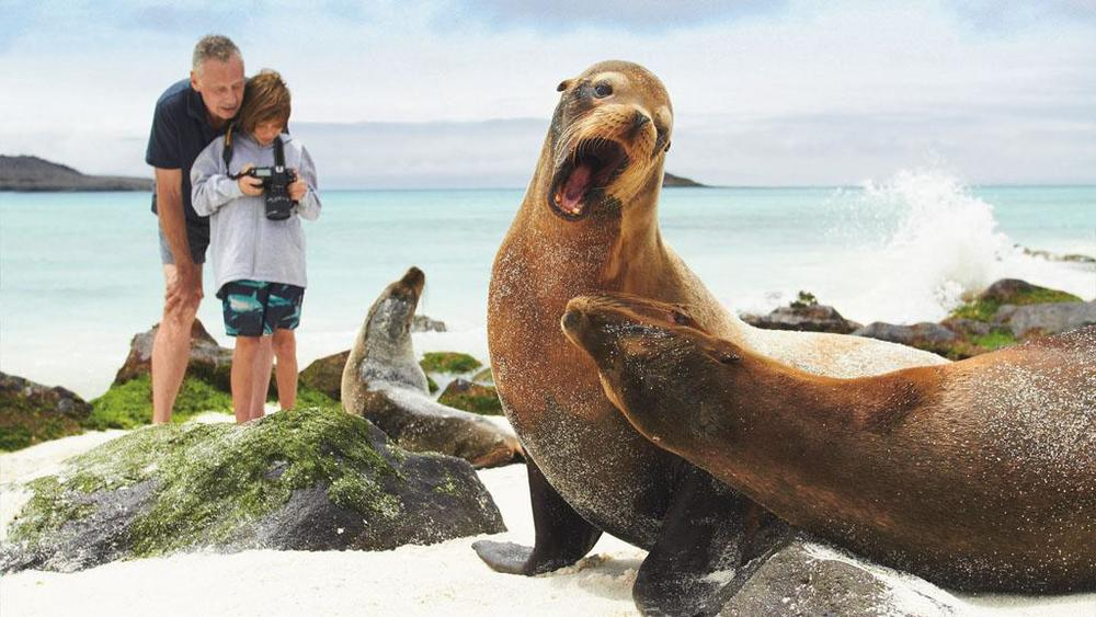 Lindblad Seals - v.com.jpg