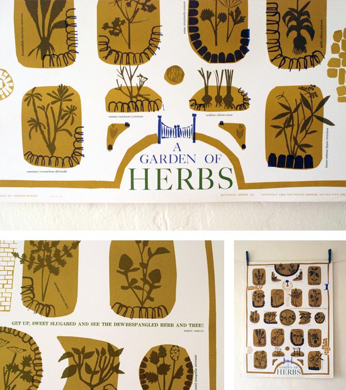 herbs-grid1.jpg