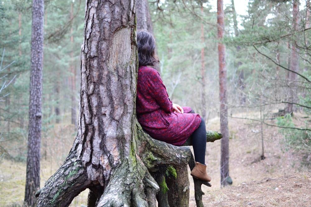 tree nap.JPG