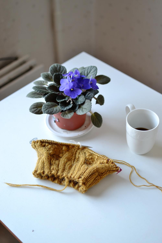 yarn and plant.JPG