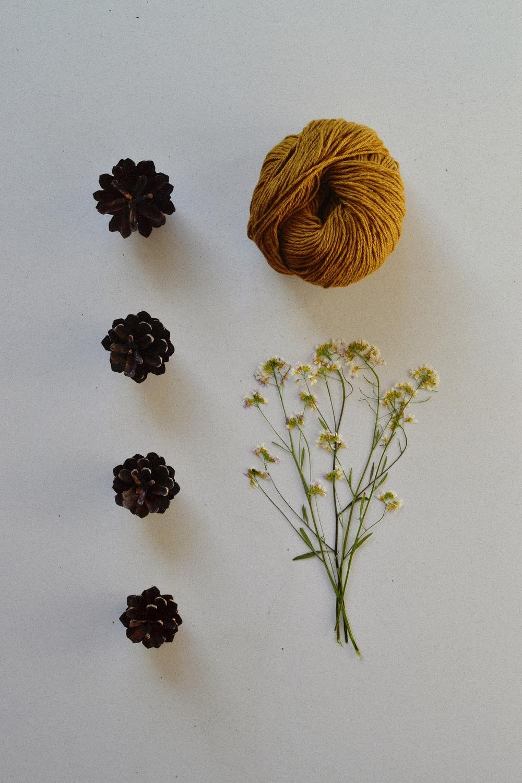 mustard yarn & botanicals