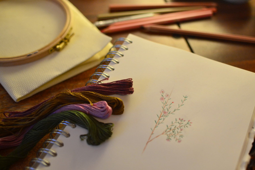 Botanical embroidery project: chamelaucium