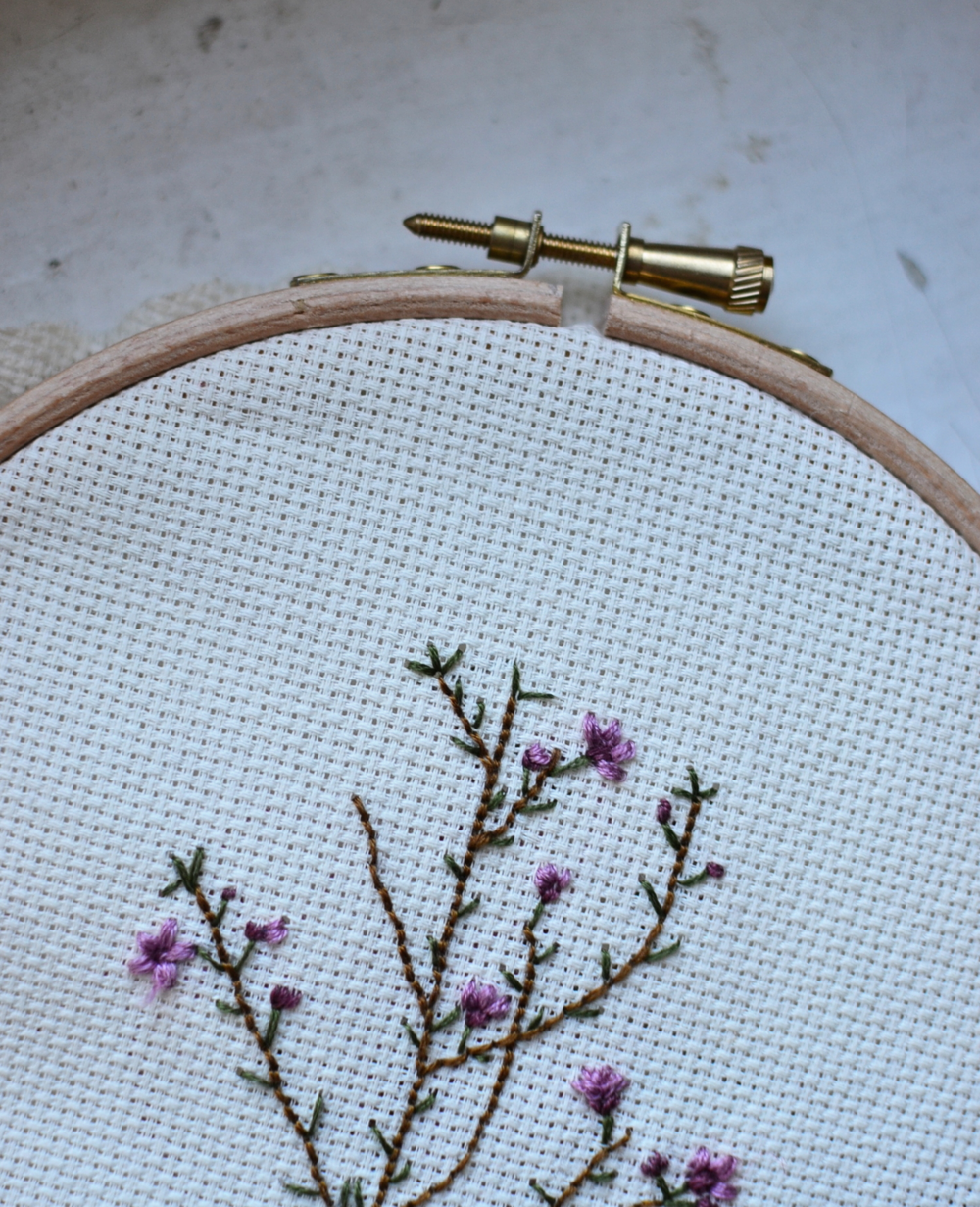 Botanicalb embroidery project: chamelaucium