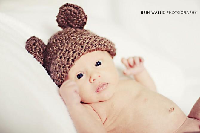 baby bear cute