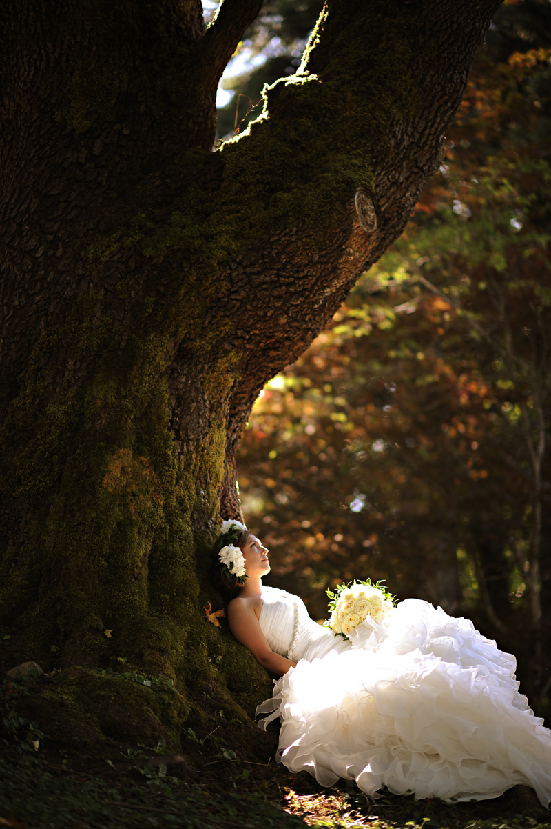 beautiful_bride