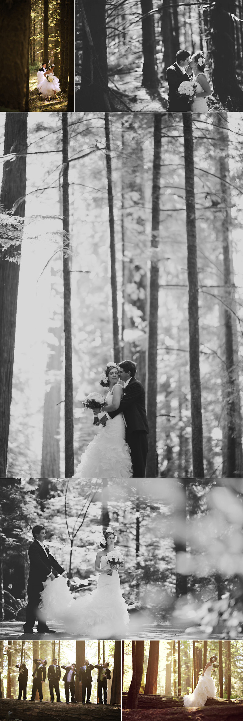 forest_wedding
