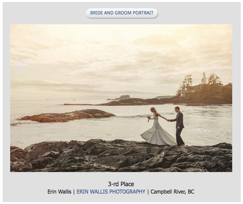 tofino wedding winning images