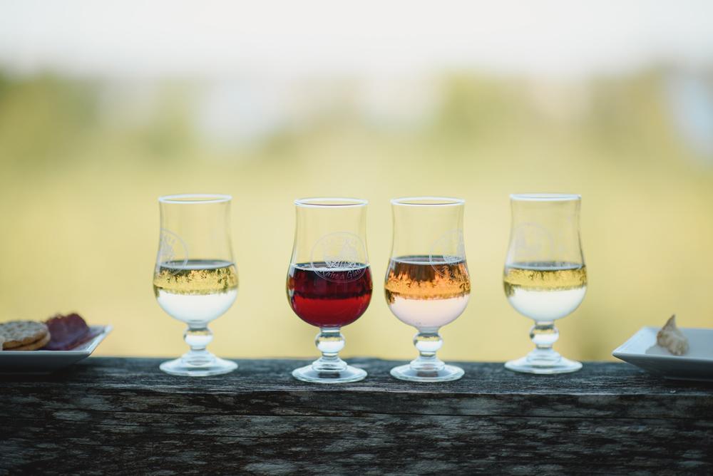 sea cider glasses