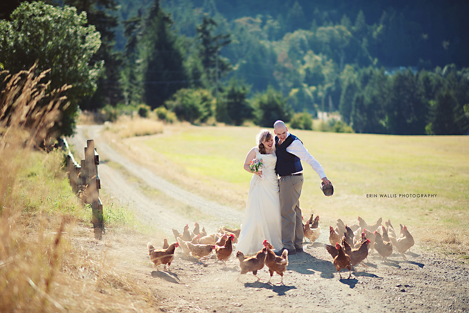 Birds eye cove farm wedding