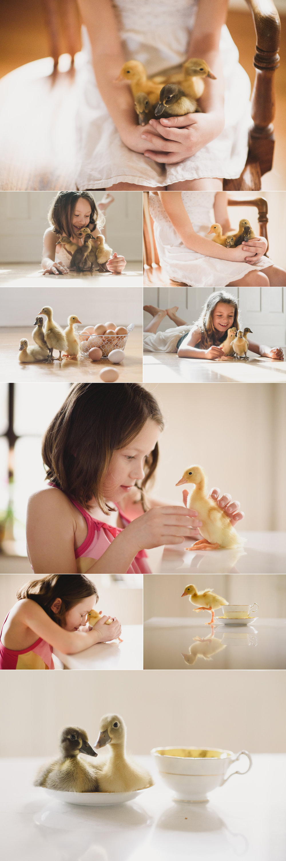 ducklings and kids