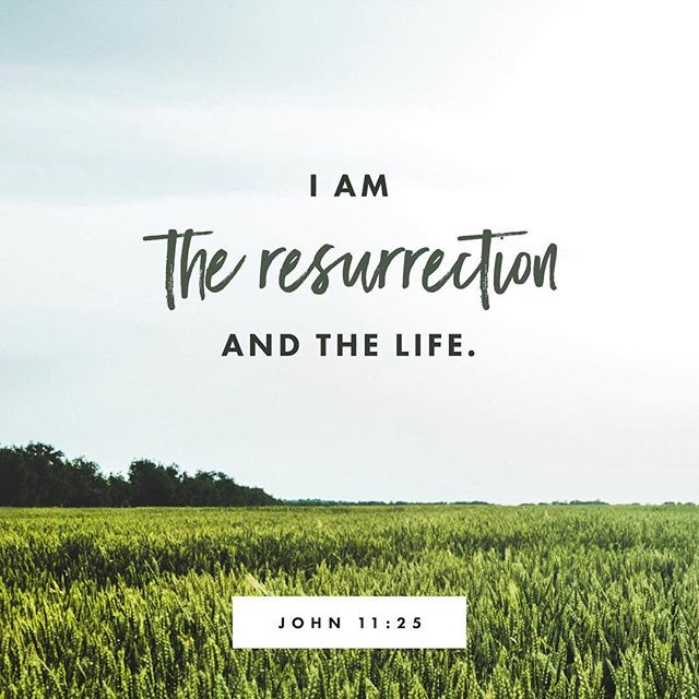 He is risen!✝️ • We are celebrating Easter and the joy we have in knowing Jesus rose from the tomb! 💐 • #ZaoOutdoors #easter #heisrisen