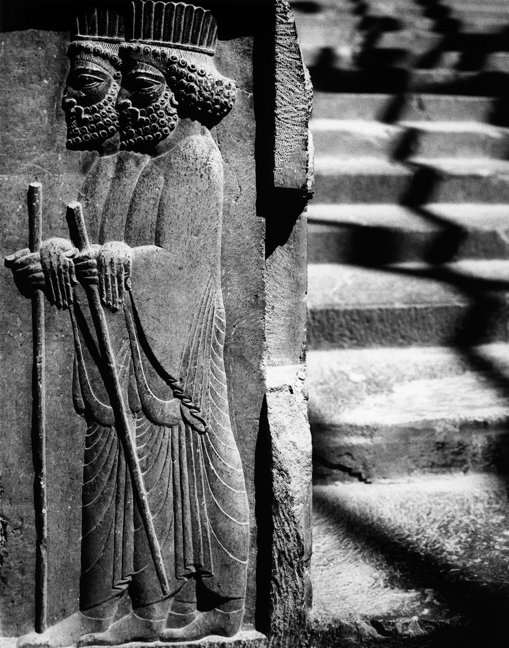 Persian courtiers on the processional stairway, Persepolis