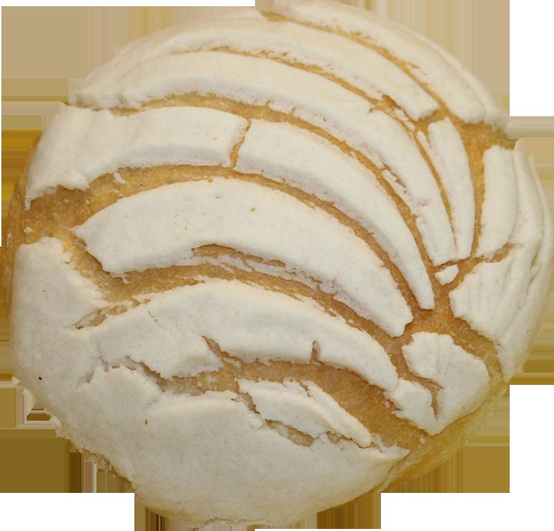 White Concha