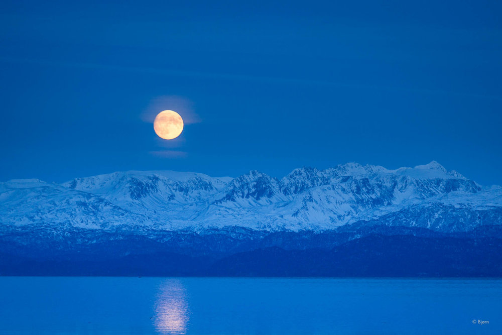 December moonrise - Homer.