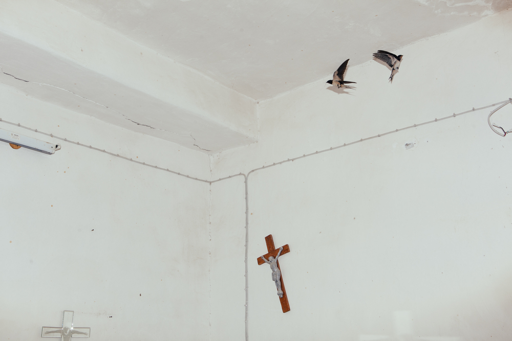 Two birds fly in a room adorned with crosses at St. George's Chaldean church in the village of Baqofah,Northern Iraqi Kurdistan.