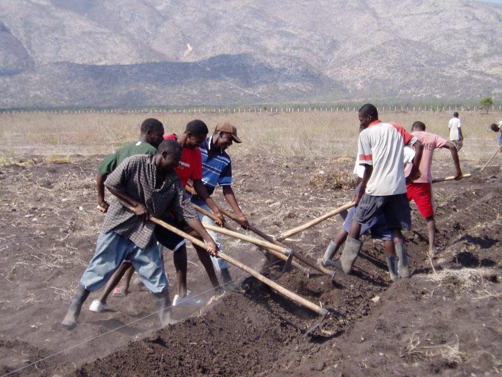 Peasants help create an irrigation canal.