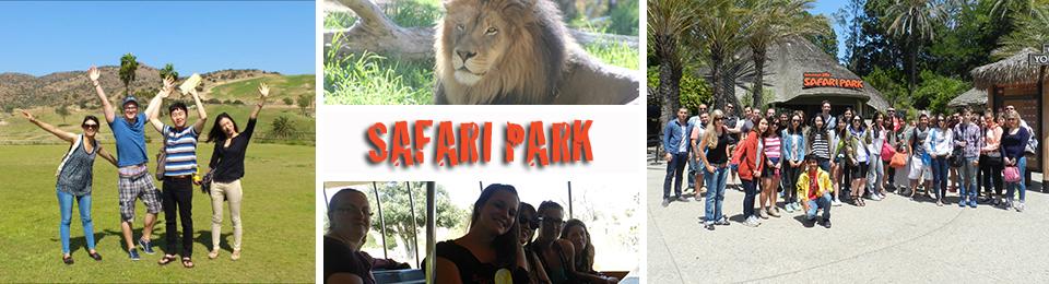 Safari_Park_San_Diego_Experiences.jpg