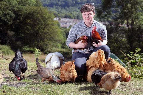 Callam_Griffiths_ClydachPoultry(Boy-Wales, UK).jpg