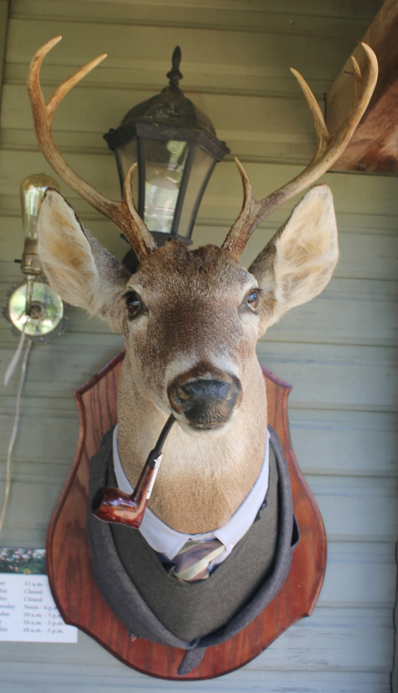 RTTX Dapper Deer - The Vintage Round Top