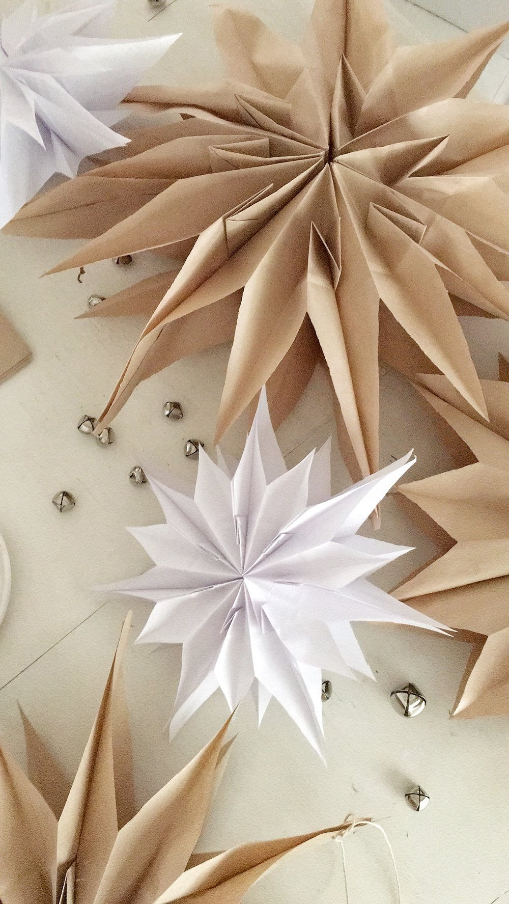 Paper Star image by: Becki Griffin