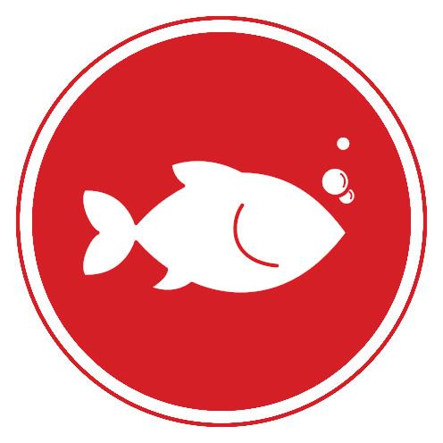 cause-fish.jpg