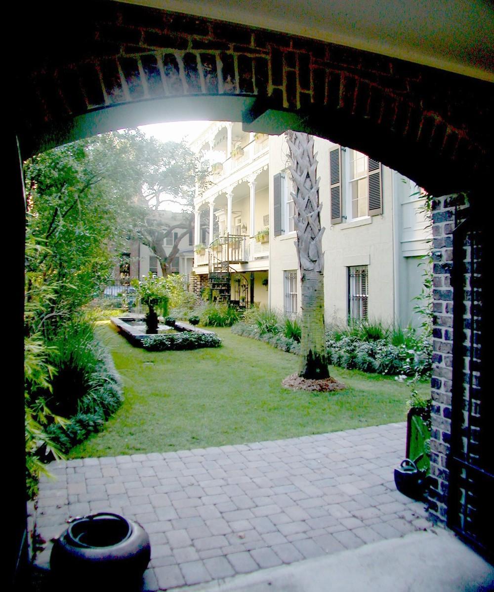 garden from garage.JPG