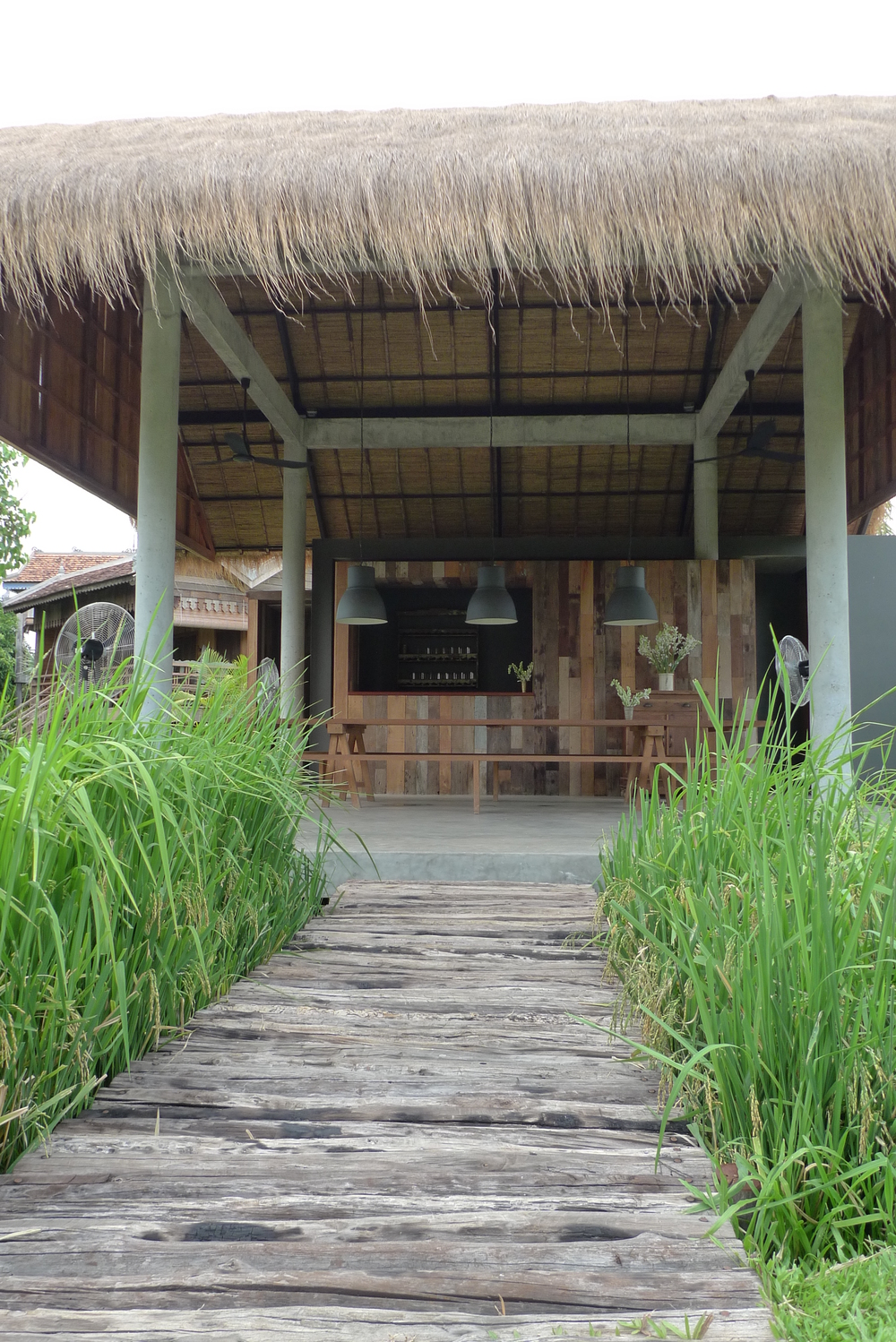 Bridge across the rice paddy to the lounge