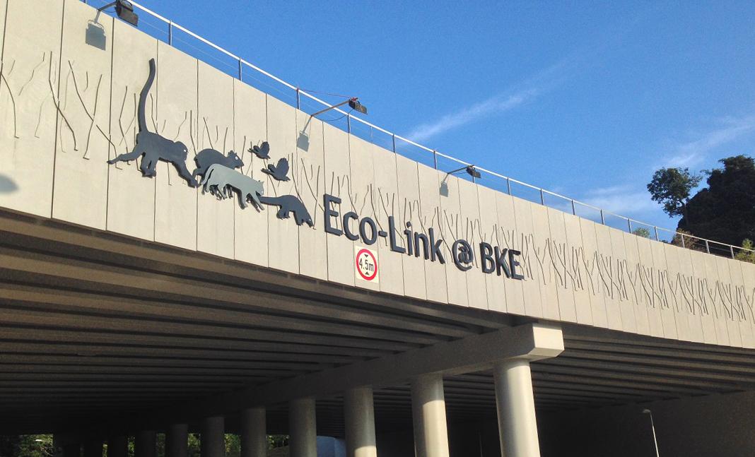 Image result for Eco-link bridges