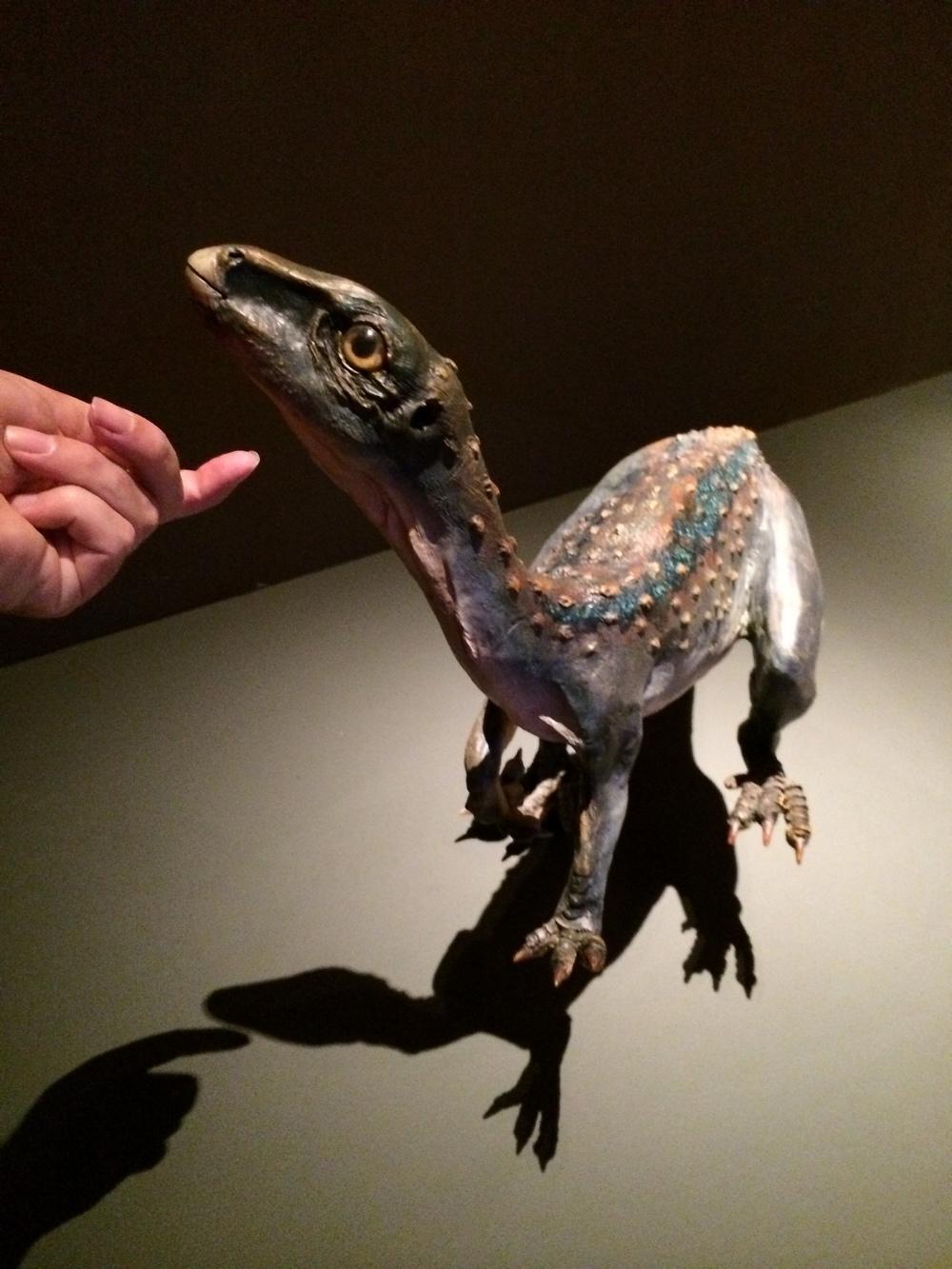 Dino petting zoo?