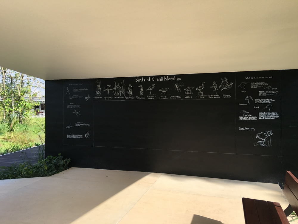 Classroom blackboard at Kranji Gate with Bird illustrations