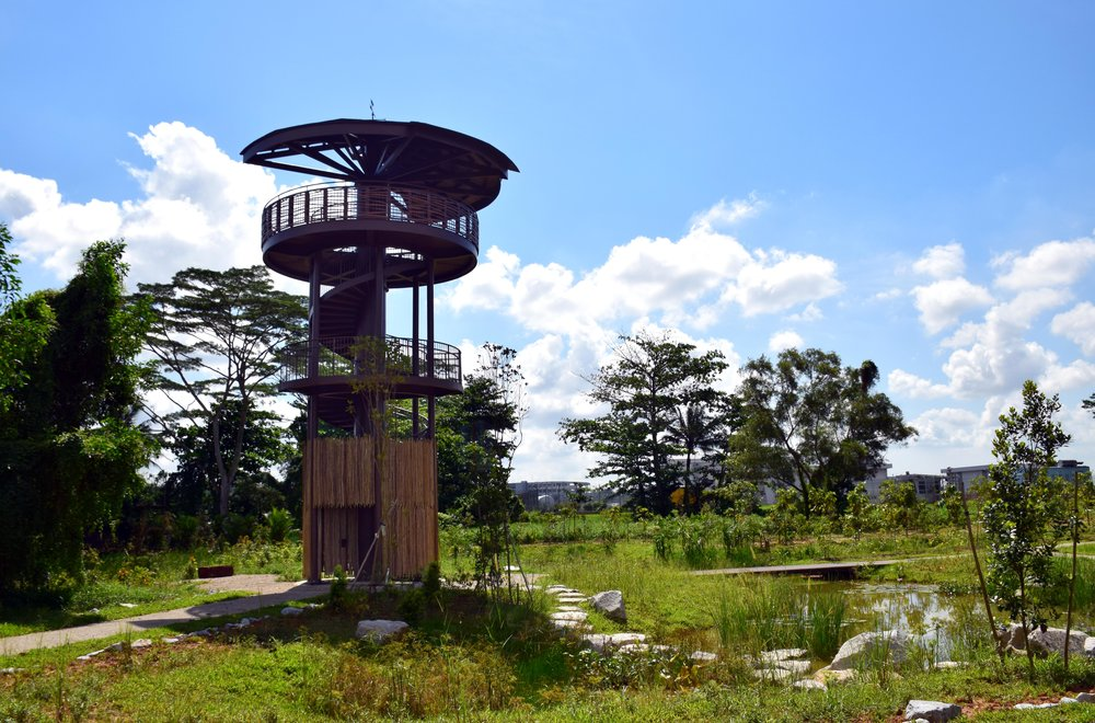 The Raptor Tower at the Marsh Station at Kranji Marshes