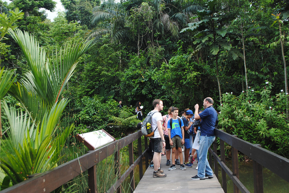 Keppel Discovery Wetlands at the Learning Forest