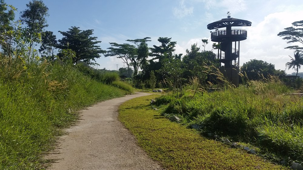 Raptor Tower @ Kranji Marshes by Stephen Caffyn Landscape Design