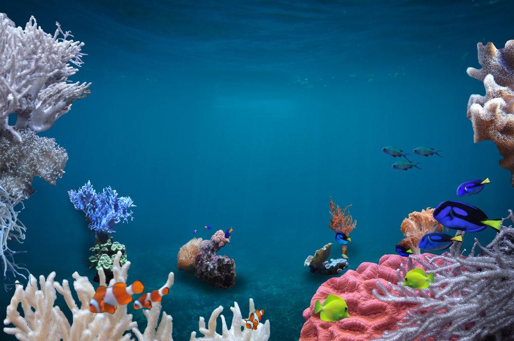 KMP Underwater.jpg