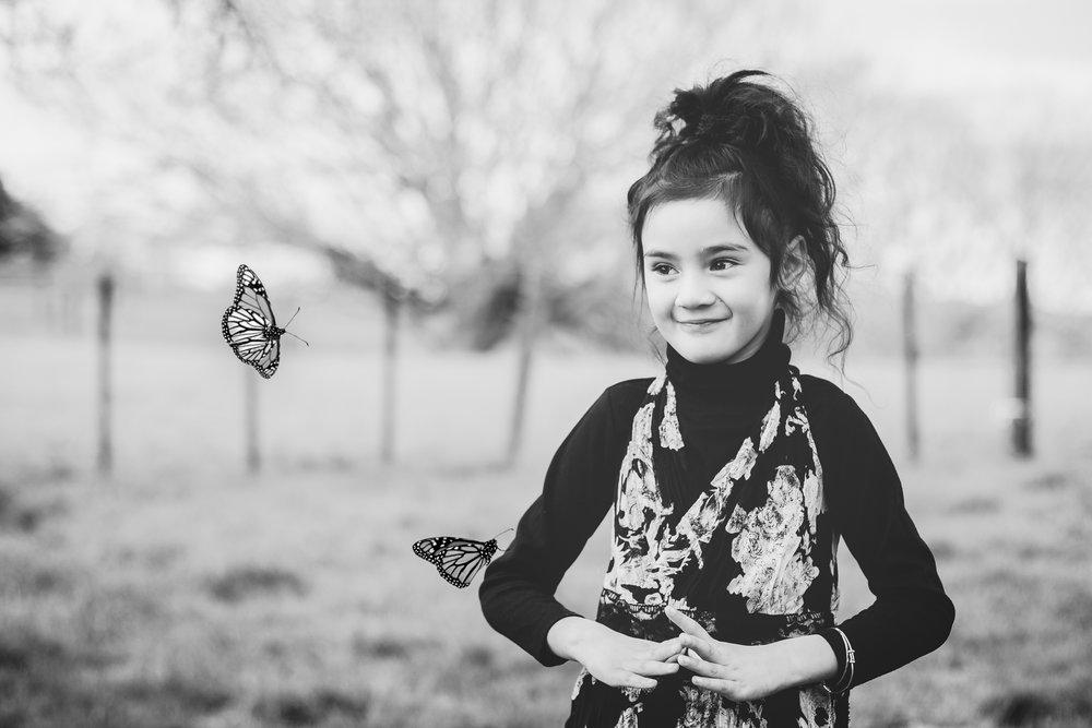 IMG_6852butterflies.jpg