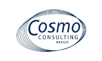 Cosmo Consulting.jpg