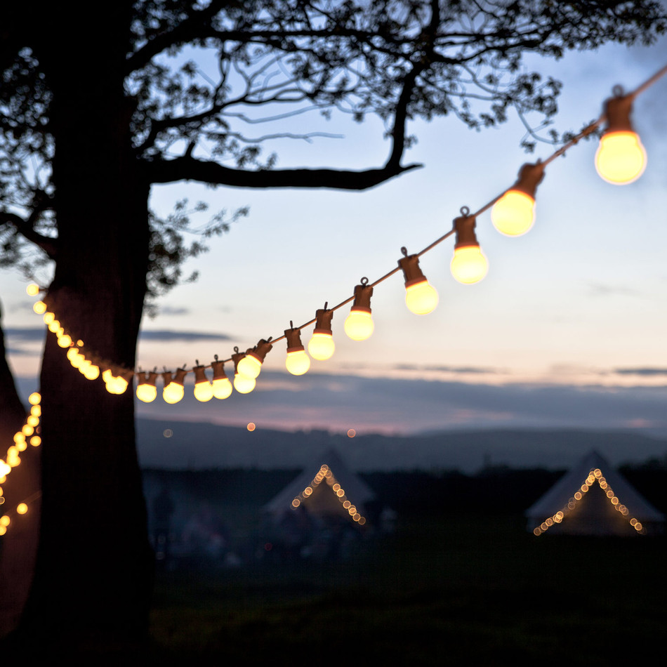 Festoon Lights $30 each