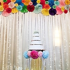Fairy Light Backdrop $100