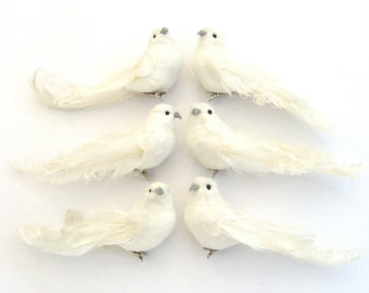 White Doves $4